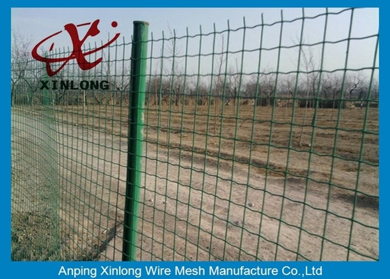 چین Commercial Horizontal Fence Panels , Holland Wire Mesh PVC Coated تامین کننده
